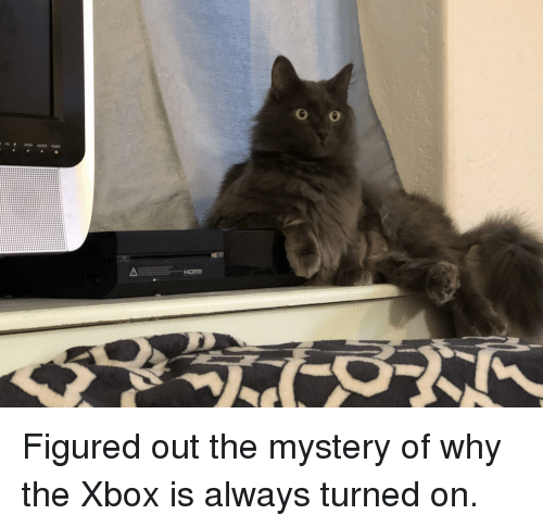 Xbox, Power, and Mystery: ENTER SORCE POWER  HoM