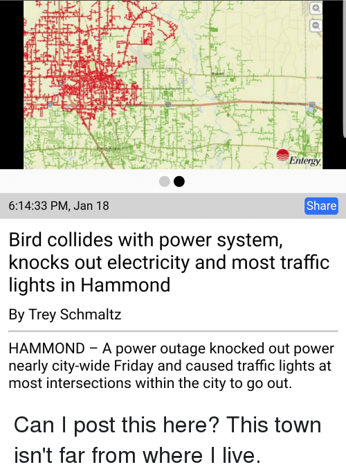 Entergy 61433 PM Jan 18 Share Bird Collides With Power
