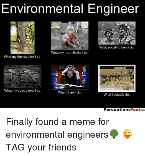 environmental engineer what society thinks i do what my mom thinks l