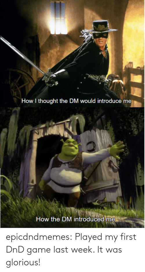 Tumblr, Blog, and Game: epicdndmemes:  Played my first DnD game last week. It was glorious!