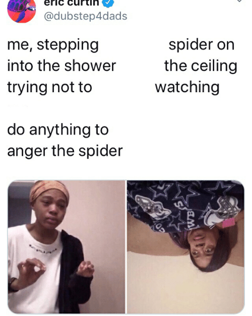 Shower, Spider, and Anger: eric  @dubstep4dads  me, stepping  into the shower  spider on  the ceiling  watching  trying not to  do anything to  anger the spider