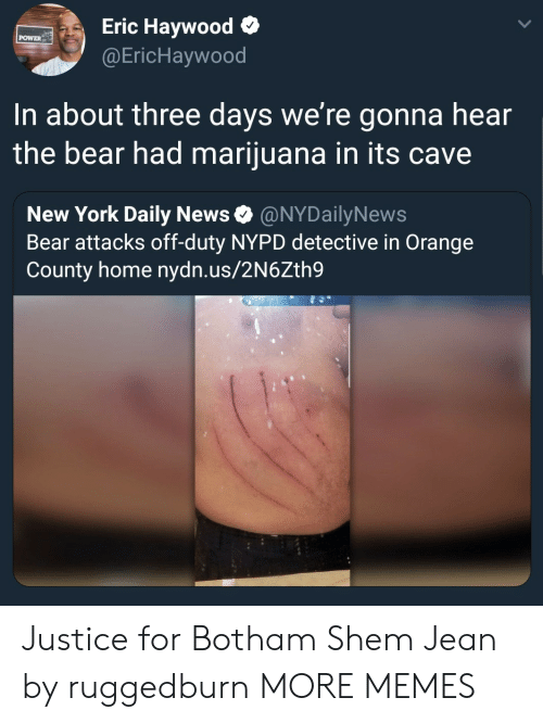 Dank, Memes, and New York: Eric Haywood o  @EricHaywood  POWER  In about three days we're gonna hear  the bear had marijuana in its cave  New York Daily News Ф @NYDailyNews  Bear attacks off-duty NYPD detective in Orange  County home nydn.us/2N6Zth9 Justice for Botham Shem Jean by ruggedburn MORE MEMES