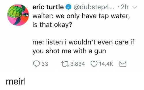 Okay, Turtle, and Water: eric turtle @dubstep4... 2h v  waiter: we only have tap water,  is that okay?  me: listen i wouldn't even care if  you shot me with a gun  33 t03,834 14.4K meirl