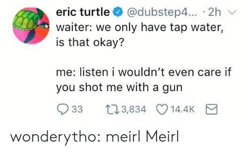 Tumblr, Blog, and Http: eric turtle @dubstep4... 2h v  waiter: we only have tap water,  is that okay?  me: listen i wouldn't even care if  you shot me with a gun  33 t03,834 14.4K wonderytho:  meirl  Meirl