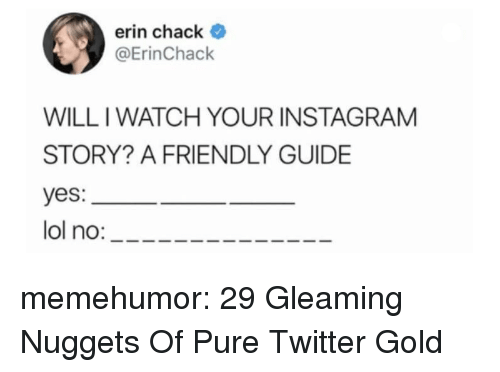 Instagram, Lol, and Tumblr: erin chack  @ErinChack  WILL IWATCH YOUR INSTAGRAM  STORY? A FRIENDLY GUIDE  yes:  lol no: memehumor:  29 Gleaming Nuggets Of Pure Twitter Gold