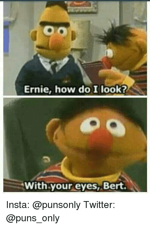 Puns, Twitter, and How: Ernie, how do I look?  With your eyes, Bert Insta: @punsonly Twitter: @puns_only