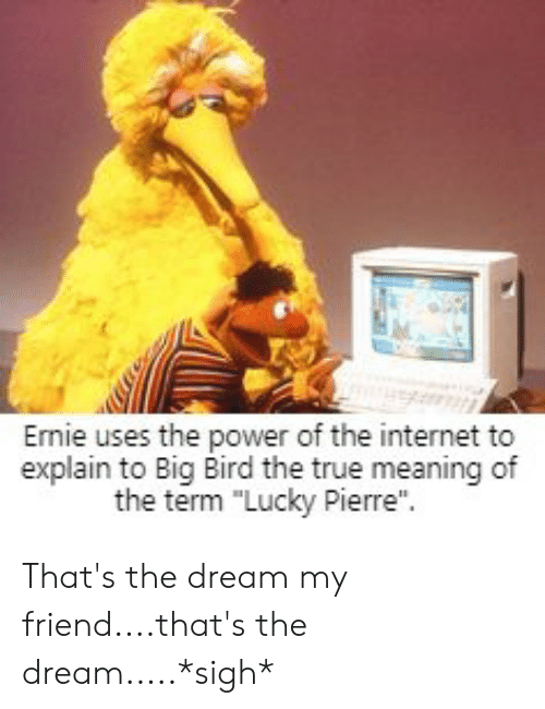 """Internet, True, and Meaning: Ernie uses the power of the internet to  explain to Big Bird the true meaning of  the term """"Lucky Pierre"""". That's the dream my friend....that's the dream.....*sigh*"""
