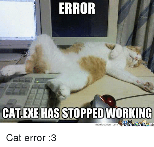 ERROR CAT EXE HAS STOPPED WORKING Memecentercom Cat Error 3 | Cats Meme on  ME.ME