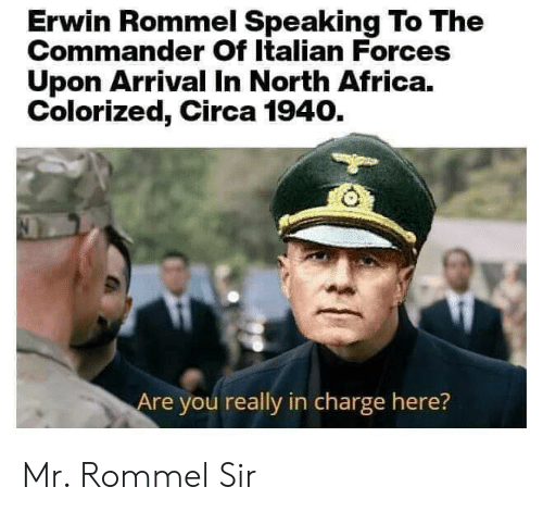 Erwin Rommel Speaking to the Commander of Italian Forces