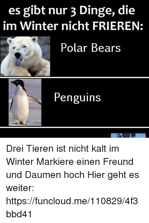 es gibt nur 3 dinge die im winter nicht frieren polar bears penguins drei tieren ist nicht kalt. Black Bedroom Furniture Sets. Home Design Ideas