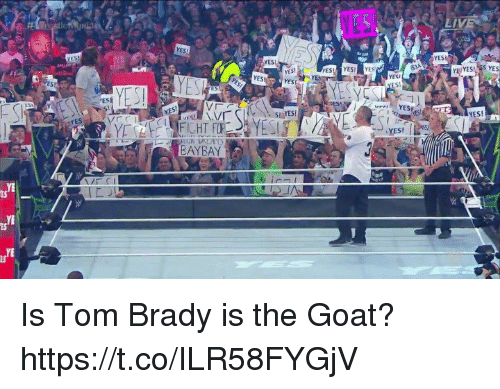 Tom Brady, Goat, and Brady: ES  Iv  YES  YESL  YES  YES  YES  YE YES YES  YES  YESI  ES  YES  SES!  YES!  AYBAY  YE  ES  YE  ES Is Tom Brady is the Goat? https://t.co/ILR58FYGjV