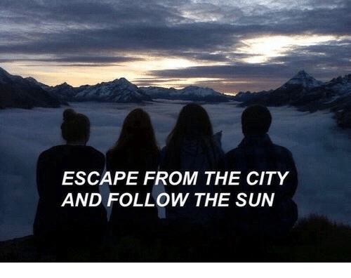 Sun, The Sun, and City: ESCAPE FROM THE CITY  AND FOLLOW THE SUN