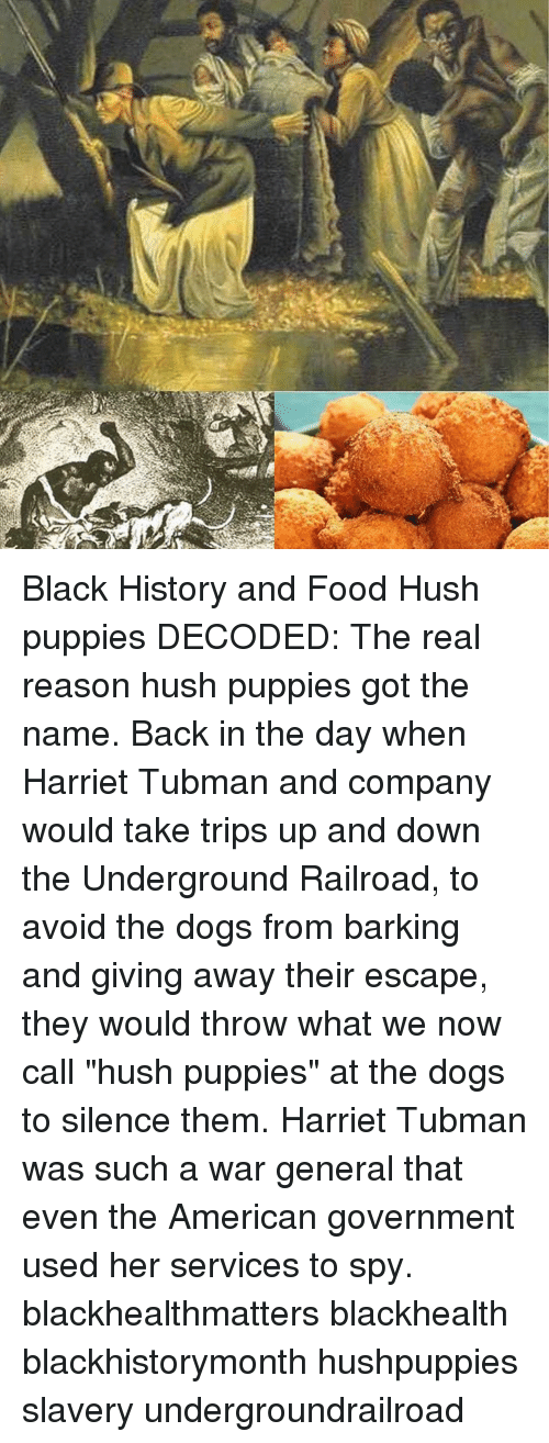 Ese Black History And Food Hush Puppies Decoded The Real Reason Hush Puppies Got The Name Back In The Day When Harriet Tubman And Company Would Take Trips Up And Down The