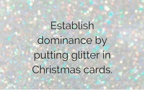 memes and christmas cards establish dominance by putting glitter in christmas cards
