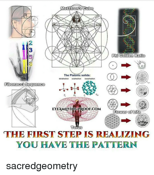 Memes And Step Etatrons Cube Phi Golden Ratio The Platonic Solids