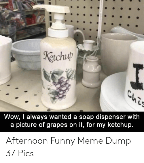 Funny, Meme, and Wow: etchuip  Wow, I always wanted a soap dispenser with  a picture of grapes on it, for my ketchup. Afternoon Funny Meme Dump 37 Pics