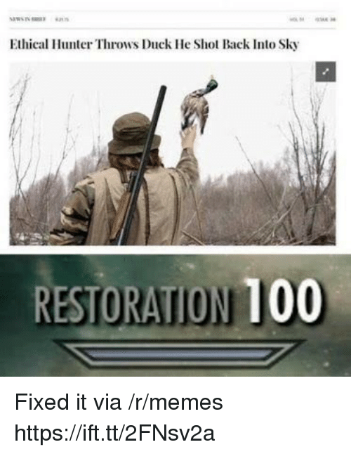 Anaconda, Memes, and Duck: Ethical Hunter Throws Duck He Shot Back Into Sky  RESTORATION 100 Fixed it via /r/memes https://ift.tt/2FNsv2a