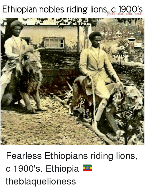 Ethiopian Nobles Riding Lions Atheblaquelioness Fearless ...