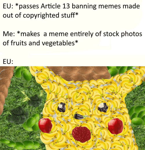 Meme, Memes, and Stuff: EU: *passes Article 13 banning memes made  out of copyrighted stuff*  Me: *makes a meme entirely of stock photos  of fruits and vegetables*  EU: