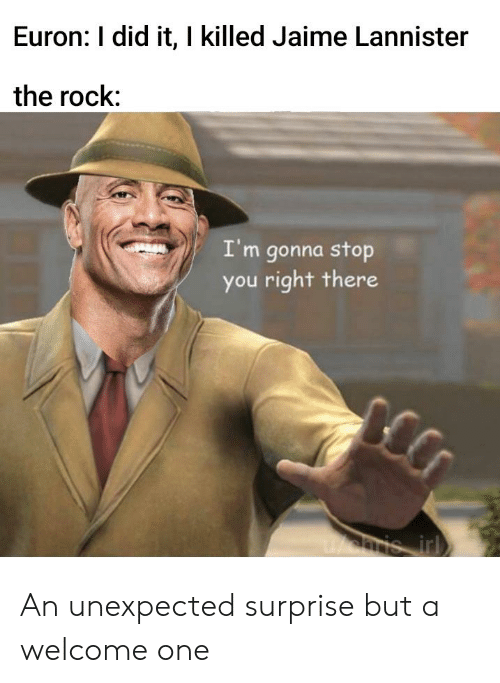 Reddit, The Rock, and Jaime Lannister: Euron: I did it, I killed Jaime Lannister  the rock:  I'm gonna stop  you right there An unexpected surprise but a welcome one