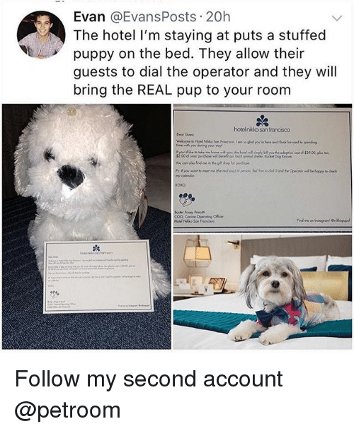 Funny, Hotel, and Puppy: Evan @EvansPosts 20h  The hotel I'm staying at puts a stuffed  puppy on the bed. They allow their  guests to dial the operator and they will  bring the REAL pup to your room  hotel nikko san francisco  Deor Guen,  my oolendar  Holel Nako Son Franoisco Follow my second account @petroom