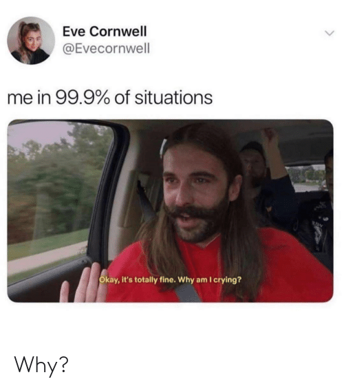 Crying, Okay, and Eve: Eve Cornwell  @Evecornwell  me in 99.9% of situations  RAW  Okay, it's totally fine. Why am I crying? Why?