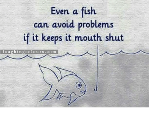Memes, 🤖, and Avoidance: Even a fish.  can avoid problems  if it keeps it mouth shut  laughin  g colours.com