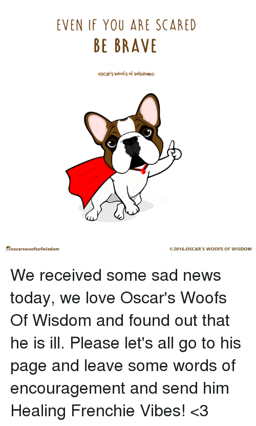 Even If You Are Scared Be Brave Oscars Woofs Of Wisdomo Oscars