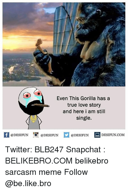 Be Like, Love, and Meme: Even This Gorilla has a  true love story  and here i am still  single.  もJ  K @DESIFUN 증@DESIFUN  @DESIFUN DESIFUN.COM Twitter: BLB247 Snapchat : BELIKEBRO.COM belikebro sarcasm meme Follow @be.like.bro