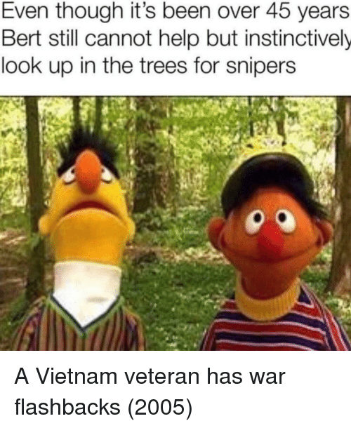 Help, Trees, and Vietnam: Even though it's been over 45 years  Bert still cannot help but instinctively  look up in the trees for snipers A Vietnam veteran has war flashbacks (2005)