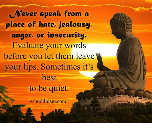 Quotes About Anger And Rage: Ever Speak From A Place Of Hate Jealousy Anger Or