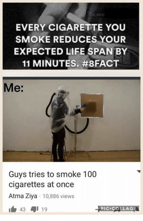 Memes, Smoking, and Collage: EVERY CIGARETTE YOU  SMOKE REDUCES YOUR  EXPECTED LIFE SPAN BY  11 MINUTES. #8FACT  Me:  Guys tries to smoke 100  cigarettes at once  Atma Ziya 10,886 views  43 19  PIC COLLAGE
