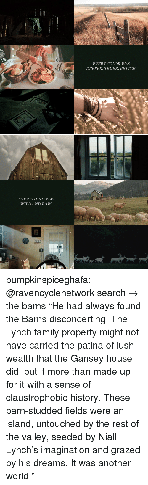 """Family, Target, and Tumblr: EVERY COLOR WAS  DEEPER, TRUER, BETTER.   EVERYTHING WAS  WILD AND RAW. pumpkinspiceghafa: @ravencyclenetwork search→ the barns """"He had always found the Barns disconcerting. The Lynch family property might not have carried the patina of lush wealth that the Gansey house did, but it more than made up for it with a sense of claustrophobic history. These barn-studded fields were an island, untouched by the rest of the valley, seeded by Niall Lynch's imagination and grazed by his dreams. It was another world."""""""
