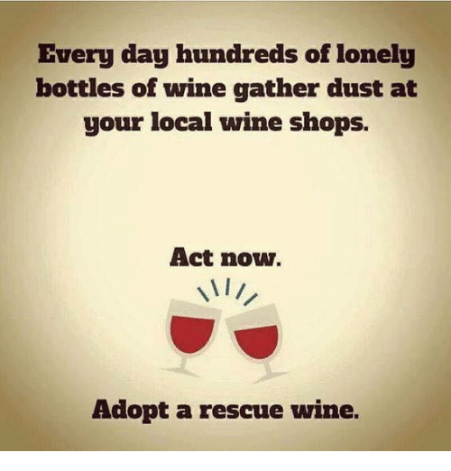 Memes, Wine, and 🤖: Every day hundreds of lonely  bottles of wine gather dust at  your local wine shops.  Act now.  Adopt a rescue wine.