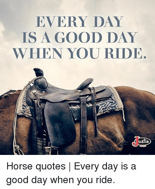 EVERY DAY IS a GOOD DAY WHEN YOU RIDE Wlin Horse Quotes ...