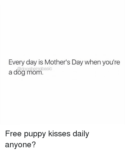 Memes, Mother's Day, and Free: Every day is Mother's Day when you're  @dogsbeing basic  a dog mom Free puppy kisses daily anyone?