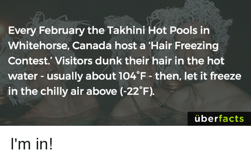 "Dunk, Memes, and Chillis: Every February the Takhini Hot Pools in  Whitehorse, Canada host a ""Hair Freezing  Contest. Visitors dunk their hair in the hot  water usually about 1O4 F then, let it freeze  in the chilly air above (-22°F)  uber  facts I'm in!"