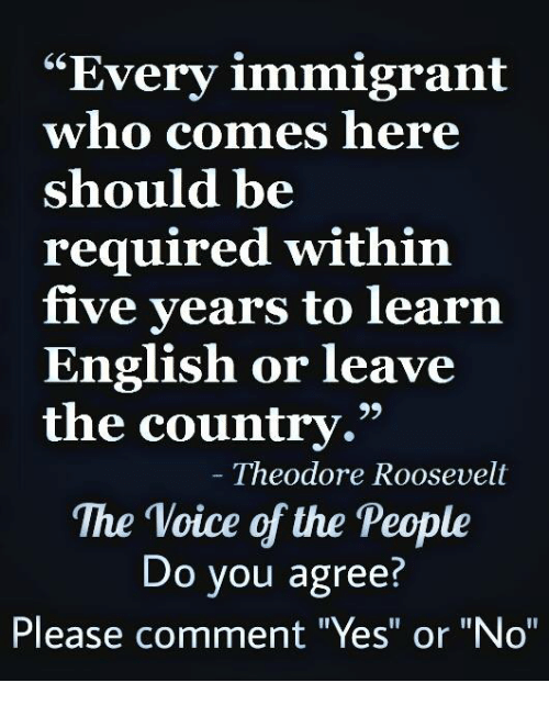 """Memes, The Voice, and Voice: """"Every immigrant  who comes here  should be  required within  five years to learn  English or leave  the country.""""  Theodore Roosevelt  The Voice of the People  Do you agree?  Please comment """"Yes"""" or """"No"""""""