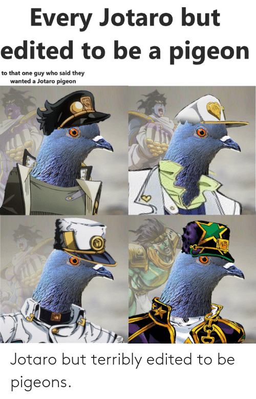 Wanted, Who, and One: Every Jotaro but  edited to be a pigeon  to that one guy who said they  wanted a Jotaro pigeon Jotaro but terribly edited to be pigeons.