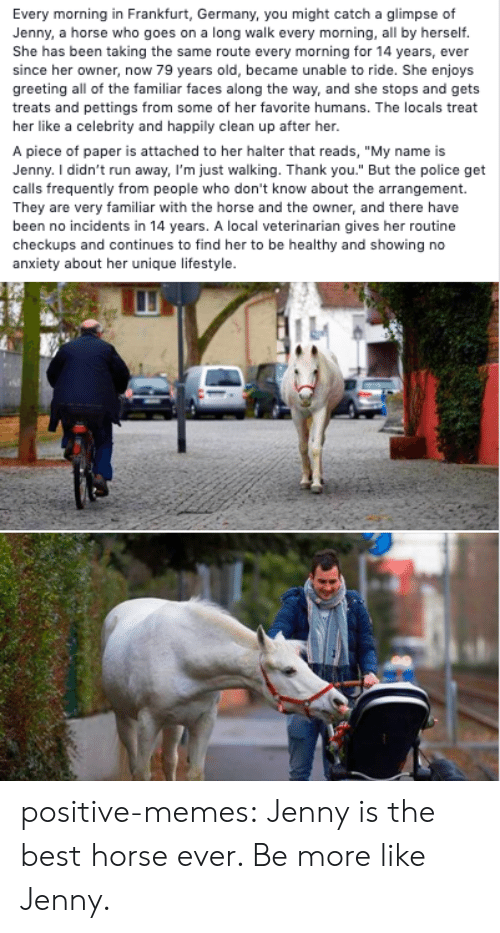 """Memes, Police, and Run: Every morning in Frankfurt, Germany, you might catch a glimpse of  Jenny, a horse who goes on a long walk every morning, all by herself.  She has been taking the same route every morning for 14 years, ever  since her owner, now 79 years old, became unable to ride. She enjoys  greeting all of the familiar faces along the way, and she stops and gets  treats and pettings from some of her favorite humans. The locals treat  her like a celebrity and happily clean up after her.  A piece of paper is attached to her halter that reads, """"My name is  Jenny. I didn't run away, I'm just walking. Thank you."""" But the police get  calls frequently from people who don't know about the arrangement.  They are very familiar with the horse and the owner, and there have  been no incidents in 14 years. A local veterinarian gives her routine  checkups and continues to find her to be healthy and showing no  anxiety about her unique lifestyle. positive-memes:  Jenny is the best horse ever. Be more like Jenny."""