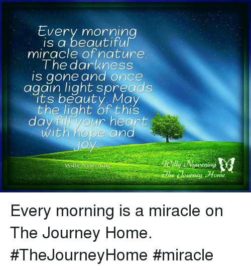 Beautiful Day For Miracle >> Every Morning Is A Beautiful Miracle Of Nature The Darkness Is Gone