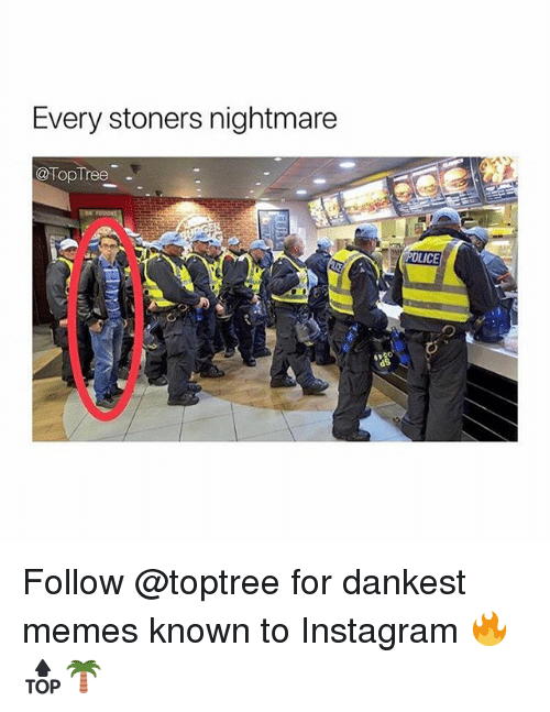 Instagram, Memes, and 🤖: Every stoners nightmare  @TopTree  OLICE Follow @toptree for dankest memes known to Instagram 🔥🔝🌴