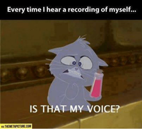 Memes, Time, and Voice: Every time I hear a recording of myself...  IS THAT MY VOICE?  MA THEMETAPICTURE.COM