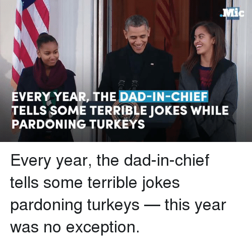 Memes, Chiefs, and Turkey: EVERY YEAR, THE DAD-IN-CHIEF  TELLS SOME TERRIBLE JOKES WHILE  PARDONING TURKEYS Every year, the dad-in-chief tells some terrible jokes pardoning turkeys — this year was no exception.