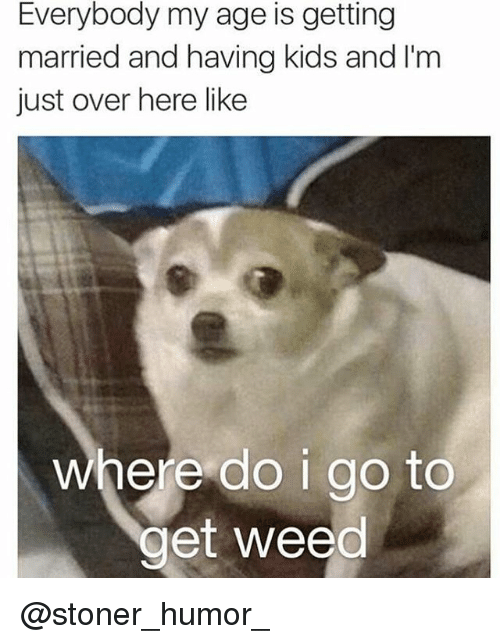 Memes, Weed, and Kids: Everybody my age is getting  married and having kids and I'm  just over here like  where do igo to  get weed @stoner_humor_