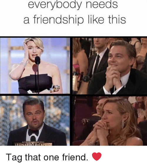 Memes, Friendship, and 🤖: everybody needs  a friendship like this  LEONARDO DICAPR Tag that one friend. ❤️