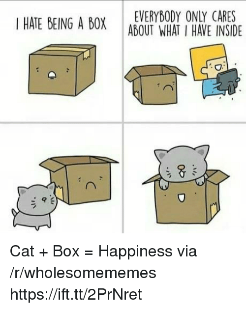 Happiness, Cat, and Box: EVERYBODY ONLY CARES  I HATE BEING A BOX ABOUT WHAT I HAVE INSIDE  4 Cat + Box = Happiness via /r/wholesomememes https://ift.tt/2PrNret