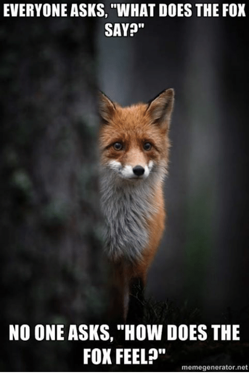 """Dank, What Does, and What Does the Fox Say: EVERYONE ASKS, """"WHAT DOES THE FOX  SAY?""""  NO ONE ASKS, """"How DOES THE  FOX FEEL?""""  memegenerator.net"""