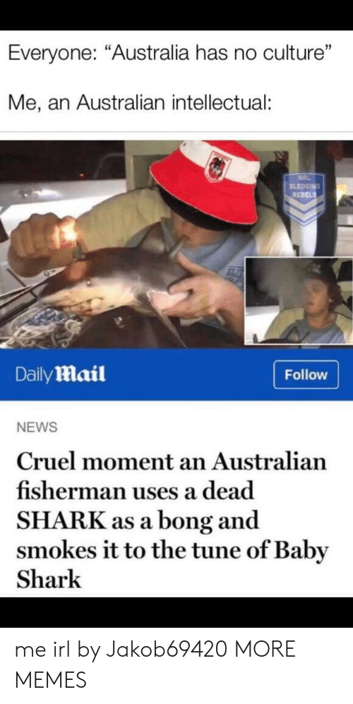 "Dank, Memes, and News: Everyone: ""Australia has no culture""  Me, an Australian intellectual:  NRL  SLEDGING  REBELS  DailyMail  Follow  NEWS  Cruel moment an Australian  fisherman uses a dead  SHARK as a bong and  smokes it to the tune of Baby  Shark me irl by Jakob69420 MORE MEMES"