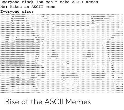 Everyone Else You Can't Make ASCII Memes Me Makes an ASCII